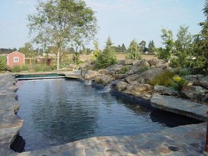 Residential Pool #065 by Carefree Pools and Spas